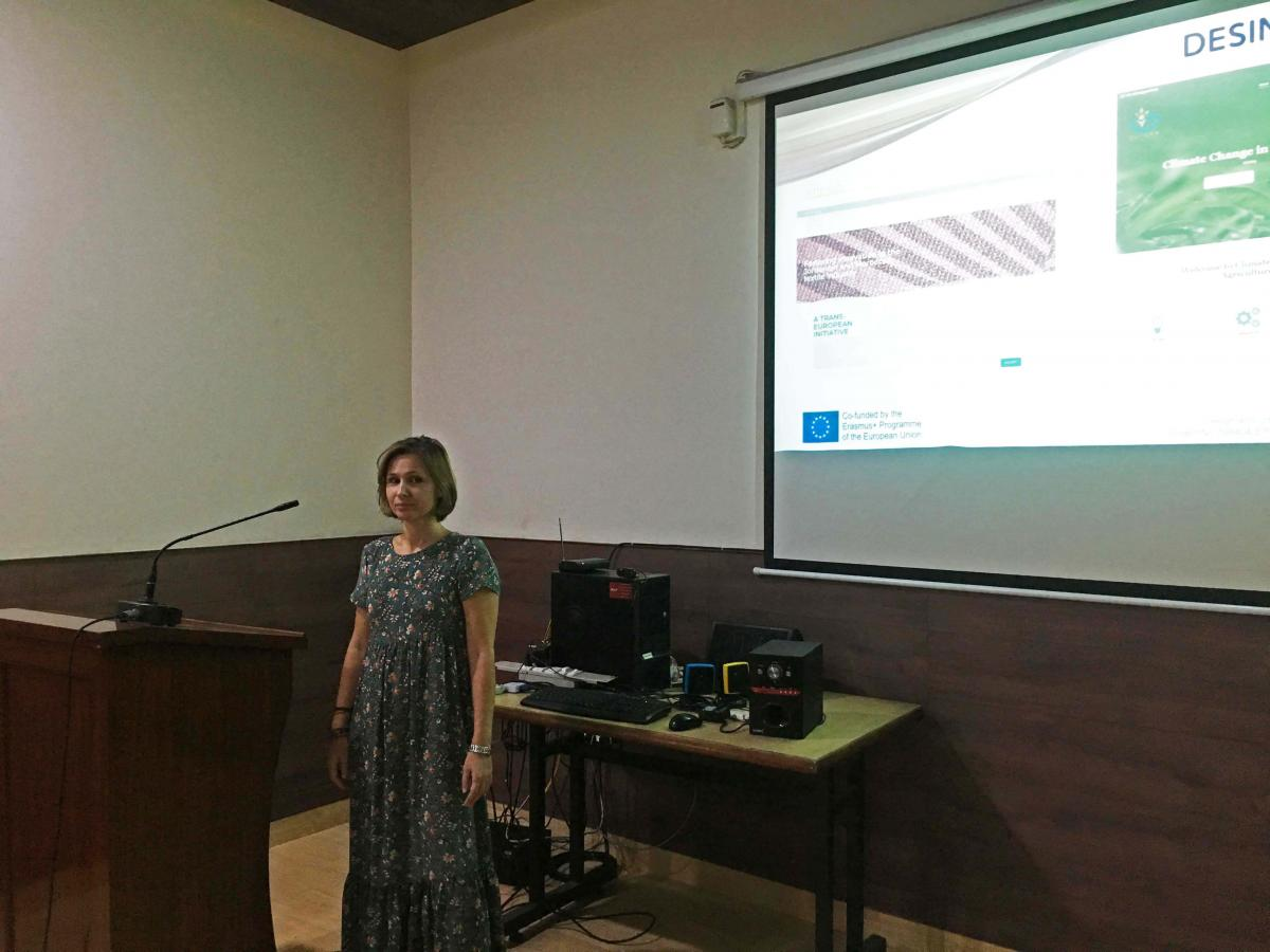 DESSINO 2nd Project Meeting