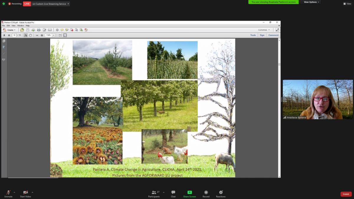 Webinar Agroforestry